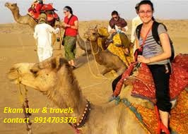 images 4 Tempo Traveller in chandigarh   Ekam Travels